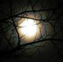 Moon1.18.2011_sm