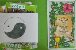 Herbal Health Card Readings - Lindaland forum